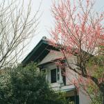 春のご近所(2012年)
