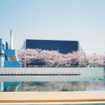 春の楽しさ(CONTAX T3)