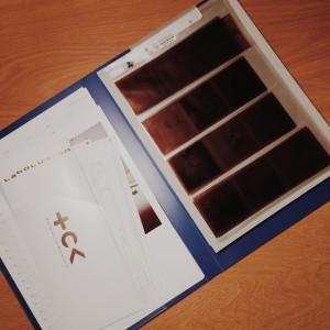 ブローニーフィルムのネガ整理ファイル