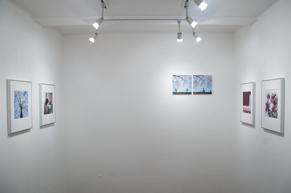 神田さやか写真展「あかねさす」奥の壁